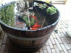 Totally was inspired by this rustic concept, that I just had to create my own mini pond. Will post my whiskey barrel pond soon. Small Water Gardens, Indoor Water Garden, Indoor Water Fountains, Container Pond, Container Water Gardens, Container Gardening, Patio Pond, Ponds Backyard, Backyard Landscaping
