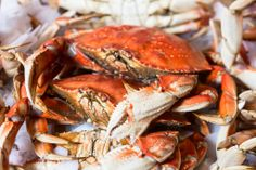 The Market has four fresh seafood vendors selling just-caught seafood and fish from PNW and Alaskan waters.