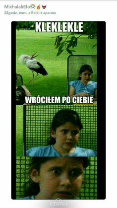 Very Funny Memes, Bad Memes, Wtf Funny, Hilarious, Hahaha Hahaha, Funny Lyrics, Cool Pictures, Funny Pictures, Polish Memes