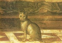 detail with cat from The Last Supper   Domenico Ghirlandaio