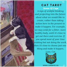 Monthly readings on my YouTube channel: www.youtube.com/c/cattarot Book your reading: www.cattarot.ca Love, Cat #tarot #tarotcards Wishful Thinking, Tarot Cards, Channel, How To Get, Shit Happens, Reading, Cats, Youtube, Books