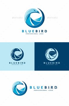 [ Logo Specifications: Full Vectors Editable And Scalable Editable Colors Cmyk Colors Print Ready Free Fonts Archive Inclides Files: Ai (Illustrator Cc) Ai (Illustrator Cs) Eps (Illustrator Psd (Photoshop) Txt (Links To The Free Fonts) Logo Design Template, Logo Templates, Hawk Logo, Hawk Bird, Bird Logos, Font Names, Illustrator Cs, Geometric Logo, Information Graphics