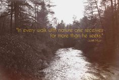 48 Best John Muir Images John Muir Quotes Nature Quotes Quotes