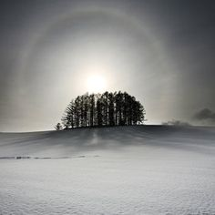 Solar halo in winter by Woosra Kim
