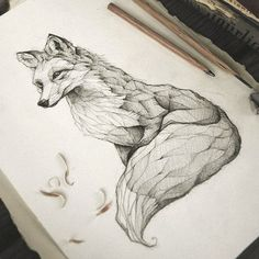 pencil, drawing, illustration, art, retro, vintage, old, fox, red fox, vulpes, animal, abstract,
