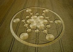 Crop circle at Scrope Wood, near Marlborough, Wiltshire, England - 22 July 2003 Crop Circles, Aliens And Ufos, Ancient Aliens, Epic Of Gilgamesh, Alien Art, White Horses, Marlborough Wiltshire, Flower Of Life, Circle Design