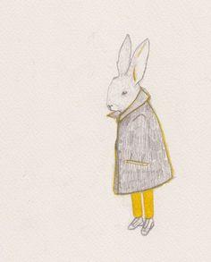 Rabbit in grey coat.