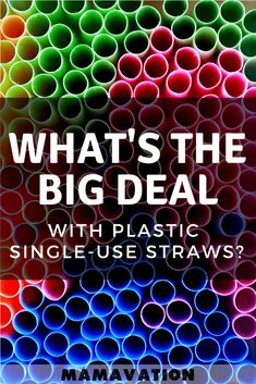 The movement to ban single-use plastic straws is gaining momentum. Cities, countries, & companies are starting to reconsider the amount of plastic they are using. Healthy Kids, Healthy Living, Organic Lifestyle, Fun Activities To Do, Future Mom, Pregnancy Tips, Straws, Parenting Advice, Teaching Kids