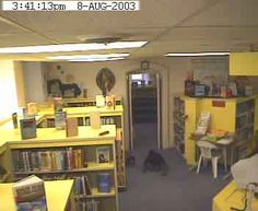Something strange crawling across the floor caught on security footage at the Willard Library in Indiana.