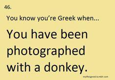 You know you're Greek when Greek Memes, Funny Greek, Greek Quotes, Greek Sayings, Greek Girl, Greek Language, Greek Music, Greek Culture, Greek Recipes