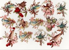 23 Victorian Chromo Die Cut Relief Scraps for Decoupage - Birds, Blossom & Fruit