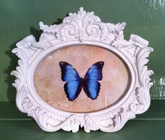 Beautiful butterfly picture frame from nook interior design.