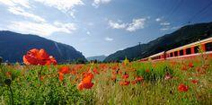il Bernina Express viaggio proposto da Il Girasole viaggi