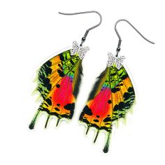 Real Butterfly earrings! bidding on one pair your choic. Starting at $11 on Tophatter.com!