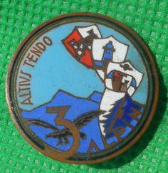 distintivo alpini alpino fregio cappello raduno ana pin badge