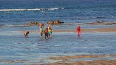 Pescatori a Pemba, Mozambico, Africa