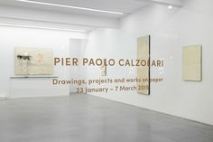 PIER PAOLO CALZOLARI // Works On Paper, Ronchini Gallery, 2015