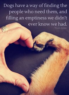 Dogs have a way of finding the people who need them, and filling an emptiness we didn't ever know we had. -Thom Jones