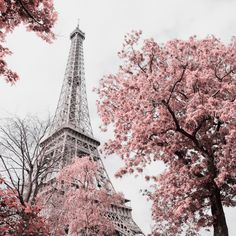Find Eiffel Tower stock images in HD and millions of other royalty-free stock photos, illustrations and vectors in the Shutterstock collection. Print Advertising, Fantasy Landscape, Us Images, Fantasy World, Royalty Free Images, Scenery, Stock Photos, France, Park