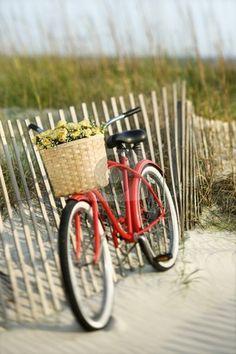 bike on beach loribethswan