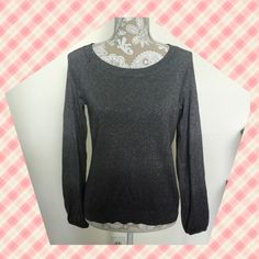 Ann Taylor Silver Sweater Ann Taylor Petites sparkly, silver ombré sweater. 55% silk, 16% cotton, 14% polyester, 8% cashmere, 7% metallic.  Good condition, no flaws. Size Large Petite. Ann Taylor Sweaters Crew & Scoop Necks
