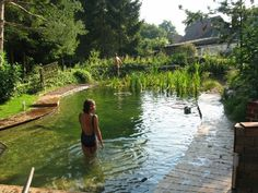 Gorgeous Backyard Swimming Ponds Ideas - Page 33 of 34 Natural Swimming Ponds, Natural Pond, Outdoor Swimming Pool, Swimming Pools, Backyard Water Feature, Ponds Backyard, Garden Pond, Water Garden, Pond Landscaping