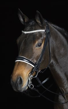The Rembrandt Xtreme Double Bridle brings extra sparkle into the ring with a three-row Swarovski crystal browband. The bridle includes a crank noseband with tapered sides and soft lining. Rolled cheek pieces add an extra touch of elegance. The bridle retails for $775.
