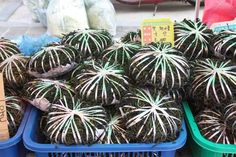 """Many vegetables through these mountainous organic sprouts and a special vegetarian dishes call """" San Chae """". You can get a real feeling of Spring."""