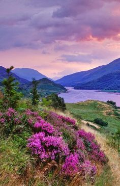 Scotland - Glencoe Village in the Highlands on south bank of the River Coe, where it enters Loch Leven Outlander, Beautiful World, Beautiful Places, England And Scotland, Scottish Highlands, Scotland Travel, Beautiful Landscapes, Wonders Of The World, Places To See