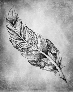Feather by BenjiiBen.deviantart.com on @deviantART