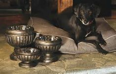 dog feeding table with bowls - Yahoo Image Search Results