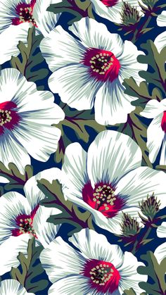 20 Top Flowers & Plants Phone Wallpapers