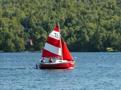 2011 West Wight Potter Potter 15 sailboat for sale in Inglewood California Inglewood California, Sailboats For Sale, Cool Boats, Art Reference, Nautical, Sailing, Ships, Mini, Sailing Yachts
