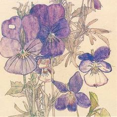 Charles Rennie Mackintosh - Sketchbook - Поиск в Google