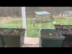 Stowe Farm Community greenhouse tour