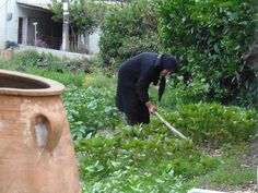 Στο κηπαλάκι... - Viannitika.gr Weed, Outdoor Power Equipment, Marijuana Plants, Garden Tools