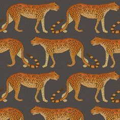 dae4e40faa9a Papier peint Leopard Walk de The Ardmore Collection de Cole and Son. Ce  papier peint