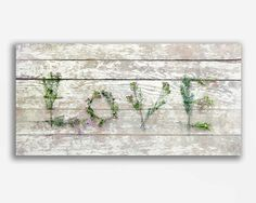 Woodland Flower Still Life Photograph LOVE by FirstLightPhoto, $25.00 #love