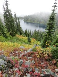 Even on a dreary overcast autumn day, the view from Mount McCausland can be divine 6.8 miles. Stevens Pass