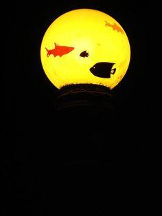 """Aquários suspensos (2007)  Bairro da Glória – Rio de Janeiro, RJ  Intervenção em luminárias de praças públicas, na qual globos de luz são """"transformados"""" em aquários através da aplicação de imagens de peixes."""
