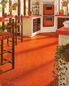 Very 70 S Tri Color Twisted Shag Carpet With Gaudy Wall