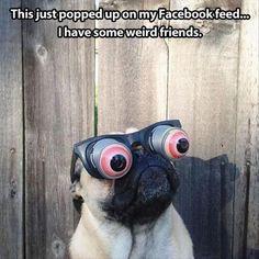 Monday's Funny Picture Dump – 124 Pics