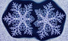 Who Ever Said No Two Snowflakes Were Alike? - The New York Times