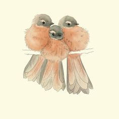 Bird family Bird Print Art A4 by TinyKiwiCreations (on Etsy, $10.00) ~ I'm going to sketch this for our grandson's family of three!