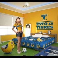 Www.akcursos.com