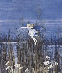 Ida Rentoul Outhwaite (1888-1960), Australian illustrator.
