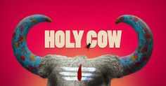 holy-cow-India
