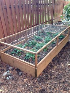If space is an issue the answer is to use garden boxes. In this article we will show you how all about making raised garden boxes the easy way. We all want to make our gardens look beautiful and more appealing. Raised Vegetable Gardens, Vegetable Garden For Beginners, Veg Garden, Vegetable Garden Design, Fruit Garden, Gardening For Beginners, Raised Garden Beds, Vegetables Garden, Vegetable Gardening