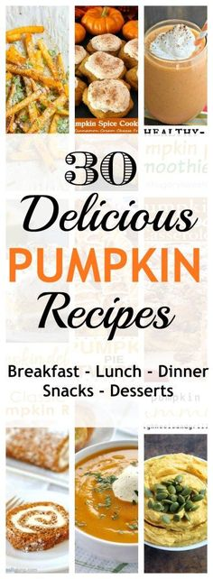 Definitely gonna try a few of these delicious looking pumpkin recipes. There is…