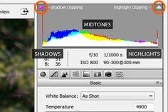 Adobe Camera RAW for Beginners: Histogram White Balance